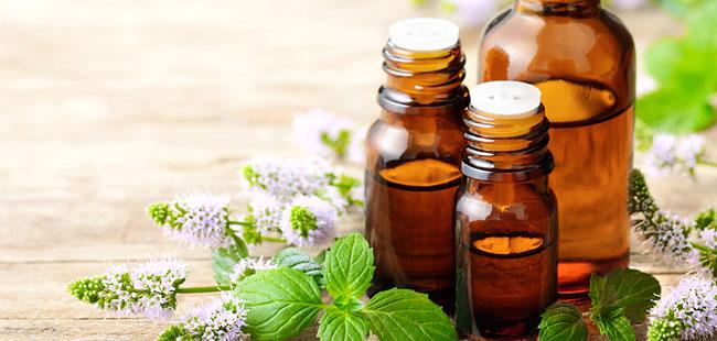 Vertus des huiles essentielles